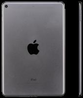 Apple iPad mini Wi-Fi 256GB spacegrau MUU32FD/A